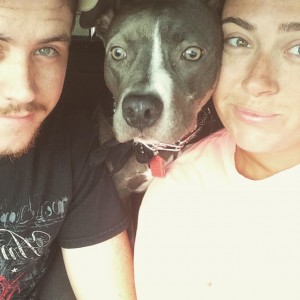 Sadie, dog, adopt, rescue