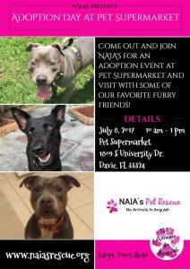 Adoption day pet supermarket rescue